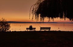 End of the day (flowerikka) Tags: atmosphere ausblick autumn autumncolors autumnmood bank bench day eveninglight eveningmood eveningsun herbst lake lakeside leaves sea seeufer shadow shore silence sky sonnenuntergang sunset ufer trees view water