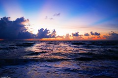 That the sea (gusdiaz) Tags: florida ftlauderdale amanecer sunrise colorful beautiful gorgeous sea ocean waves arena sal mar olas playa beach autumn fall vacation cielo nubes relaxing relajante serene magnificient
