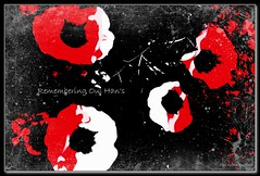 Remembering Oul Han's (Oul Gundog) Tags: remembering rememberance oul hans old hands armistice ulster division 36th co down newtownards northern ireland ik