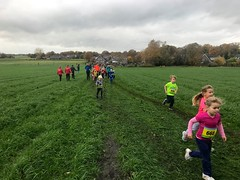 Haarlerbergloop 1 km (24)