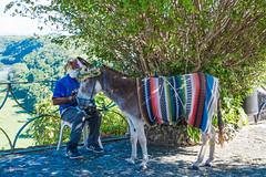 Dom_Rep_Mann mit Esel (JoA Spenrath) Tags: dominikanische republik karibik mann esel bunt blumen tragetier touristenziel