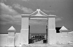Cemitério de Saquarema (vmenduina1) Tags: prakticasupertl film35mm berggerpancro400 beroflex35mm