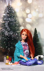 Barbie (enigma02211) Tags: barbie madetomovebarbie