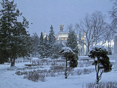 Winter in Moscow (janepesle) Tags: russia moscow winter snow cityscape city nature trees travel garden park outdoors urban evening new year christmas москва вднх