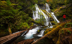Panther Creek Falls (jeanny mueller) Tags: usa southwest washington portland waterfall landscape wood forest water nature
