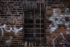 Windows... (hobbit68) Tags: fujifilm xt2 frankfurt fechenheim gitter gitterstäbe gebäude graffiti gemäuer ziegelstein ziegel wall mauer ruine rusty rostig industry industriegebiet industrie