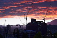 20190104-09-Crane silhouettet (Roger T Wong) Tags: 2019 australia cemotaph domain hobart rogertwong sel24105g sony24105 sonya7iii sonyalpha7iii sonyfe24105mmf4goss sonyilce7m3 tasmania clouds sky sunset