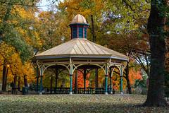 DSC02005 (sean badock) Tags: st louis stlouis stl towergrovepark park missouri fall fallcolors trees nature leaves autumn orange