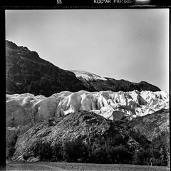 Exit Glacier, Alaska (Mister Electron) Tags: 120rollfilm bw biometar80mmf28 carlzeiss carlzeissjena kodakplusxpan mediumformat pentacon6 analogue blackwhite blackandwhite film monochrome negative rollfilm alaska usa exitglacier glacier landscape