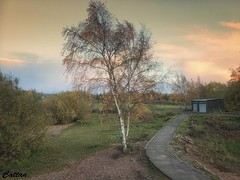 Chase Water, Burntwood (cattan2011) Tags: england 英国 hiking nationalpark autumn sunset traveltuesday travelphotography travelbloggers travel natureperfection naturelovers naturephotography nature landscapephotography landscape chasewater burntwood