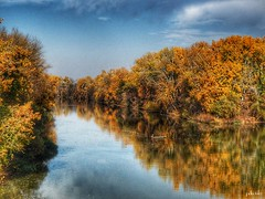 Tokaj (viktórianagynépetró1) Tags: autumn autumntime autumncolors tree trees november