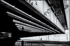 Lines (mirsavio) Tags: krakow poland bridge morning lite birds fujxt20