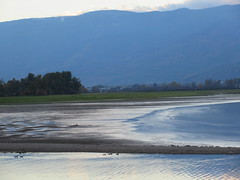Evening comes on (jamica1) Tags: sunset twilight evening salmon arm shuswap bc british columbia canada