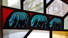 skeletal sheep (Mamluke) Tags: glass sheep stainedglass skeletal boechapel boememorialchapel chapel college stolafcollege northfield minnesota northfieldminnesota mamluke three 3 line 1950s conradpickelstudio church église kerk iglesia kirche chiesa window fenêtre venster fenster ventana finestra verre glas vetro cristal colored coloured blue bleu blau blu azul blauw