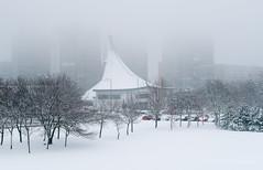 019Jan 28: Misty Snow (Johan Pipet 2M+ views) Tags: flickr city park town suburb church snow sneh mesto sídlisko bratislava slovakia slovensko dubravka winter zima palo bartos bartoš canon eu europe kostol fog hmla