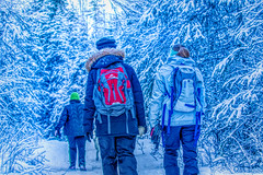 537A6596 (sullivaniv) Tags: alaska eagle river biggs bridge hiking group