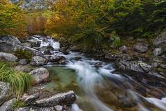 Selva otoñal (6) (sostingut) Tags: bosque río otoño roca agua madera paisaje pirineos valle barranco cascada nikon tamron haida d750