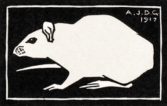 Mouse (1917) by Julie de Graag (1877-1924). Original from The Rijksmuseum . Digitally enhanced by rawpixel. (Free Public Domain Illustrations by rawpixel) Tags: madepsd madevector animal antique art artwork creature drawing handdrawn illustrated illustration illustrator juliedegraag mouse old pdrijks publicdomain rat rijksmuseum sketch stamp vintage woodcut