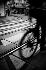 s-line (TM1ka) Tags: streetphoto sw monochrome noiretblanc blackandwhite leicam zeiss