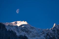 Half-moon (Amrue) Tags: forrest valens taminatal tree alpine snow switzerland morningmood moon sky outdoor halfmoon mountain baum berg schnee schweiz wald