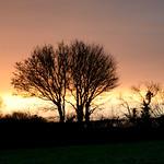 Devon sunrise thumbnail
