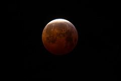 lune-8527 (ludob2011) Tags: eclipse moon brest minou lune
