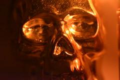 Terminator (Mikon Walters) Tags: terminator skull gold golden candle lit light lighting shadows dusty detail d5600 nikon sigma 105mm macro lens photography candles soft glow face metal molten liquid