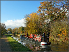 MANCHURIA (Jason 87030) Tags: manchiria butty narrowboat 90 2018 1928 rugby warwickshire canal north oxford cut autumn nice november people man woman water towpath leaves tree branch naked bare weather leaf fall season uk england lms london midland scottish railway waterway midlands