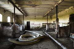 42 (marcomarchetto956) Tags: snake mystery abandoned scary old dust solitary