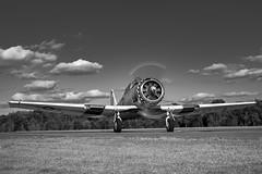 DSC_3137-Edit (CEGPhotography) Tags: 2018 harvard snj t6 texan airshow aviation culpeper culpeperairfest flight trainer virginia