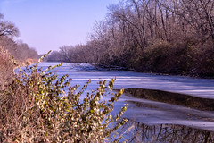 First Ice (114berg) Tags: 22nov18 thanksgiving walk hennepin canal geneseo illinois