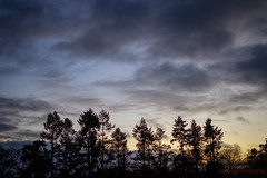337/365 - Trouble cometh (roblee.photography) Tags: clouds silhouette sky sunset trees project365 project365337 project36503dec18 2018 december canoneos7d ef40mmf28stm pictureaday photoaday oneaday