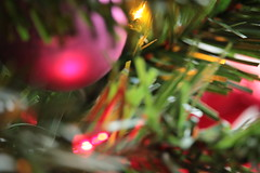 Christmas Tree Bokeh (blackunigryphon) Tags: bokeh depthoffield decor decorations christmas christmastree telephoto experimental