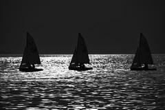 Liquid Contrast (joegeraci364) Tags: nautical photography art black boat calm horizon image marine maritime nature ocean outdoors peace photo sail sailboat scenic sea serene silhouette vessel vintage water white