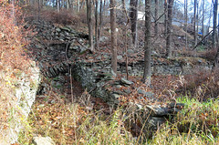 Forestburg Ruins 2 (rchrdcnnnghm) Tags: abandoned foundation ruin forestburgny sullivancountyny