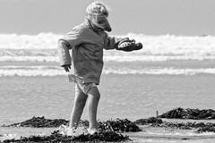 2008 surpris  DxOFP Ilford Delta100 img3358 (mich53 - thank you for your comments and 6M view) Tags: monochrome plage beach noirblanc blackwhite scènedevie mer 2008 canon eos 30d ef70300mmf456isusm surpris child fillette mädchen clogs sabots vagues peur scare angst algues lichen
