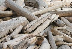 Wickaninnish Logs, Vancouver Island (Jac Hardyy) Tags: wickaninnish logs vancouver island pacific rim national park reserve canada kanada beach holz hozstamm trunk trunks wooden holzstämme nationalpark treibholz strand stamm stämme baumstamm baumstämme wood beached driftwood gestandet