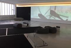 """Bjørg Tananger: """"Artikkel 19"""" (svennevenn) Tags: utstillinger exhibitions bergen kunstgarasjen bjørgtananger video installasjoner installations"""