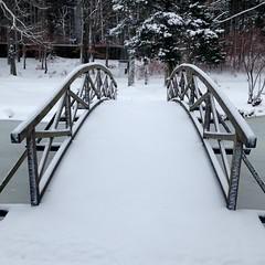 Bridge over frozen water (cu♥re di marmo) Tags: grafing urtel bach brook bridge brücke snow schnee