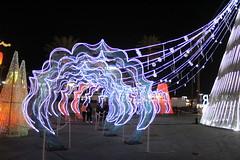 IMG_7394 (hauntletmedia) Tags: lantern lanternfestival lanterns holidaylights christmaslights christmaslanterns holidaylanterns lightdisplays riolasvegas lasvegas lasvegasholiday lasvegaschristmas familyfriendly familyfun christmas holidays santa datenight