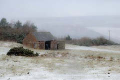 Falling thick and fast (odell_rd) Tags: alnwick northumberland snow barn coth5