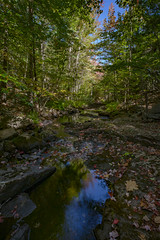 Duck Brook-4 (The Photography of Scott Eliot) Tags: barharbor maine unitedstates us
