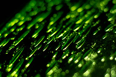 Green speckled glass abstract (tam_and_john) Tags: speckled macromondays abstract glass green low key back lit bokeh