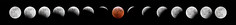 Super Wolf Blood Moon Lunar Eclipse 2019 Progression Composite Image (Bryan Carnathan) Tags: eclipse lunareclipse moon 2019 supermoon wolfmoon bloodmoon fullmoon celestial night photography astrophotography astro sky outdoor outdoors photographer pennsylvania pa nikon usa d850 reallyrightstuff rrs uniqball