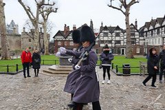 Quick March! (ioannis_papachristos) Tags: quickmarch quick march towerguard toweroflondon greentower tower london green guard royalguard castle palace fortress royal hm queens consort annboleyn boleyn execution executed beheaded decapitation 1536 irish uk england britain english british army britisharmy sentries guards papachristos motion fast rapid canon eosm50 mirrorless travel sightseeing soldiers uniform grey gray tunic regiment blur