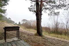Schaschlik Grill (claudipr0) Tags: lettland baltikum latvia strand ostsee sea beach schaschlik grill balticsea kiefern birken birch pinetrees saulkrasti