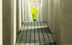 Holocaust Memorial Berlin (Jenke-PhotozZ) Tags: motive mahnmal memorial germany geometric geometrisch berlin symmetrical symmetrie city canon eos700d europe perspective photo photography beton canoneos hauptstadt holocaust holocaustmahnmal symmetric memory architecture abstract stones straight way labyrinth