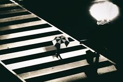 One with your environment... (8230This&That) Tags: geometric angles crosswalk streetphotography walkingintherain blackandwhite rain umbrella streetscene washingtondc dc