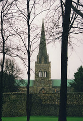 Chichester Cathederal From Bishop's Palace Garden (Serendigity) Tags: unitedkingdom england church chichester cathederal anglican steeple uk spire gb