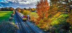 66097 at Whitacre Heath (robmcrorie) Tags: 66097 southampton birch coppie 4m71 whitacre heath autumn colour warwickshire nikon d850 intermodal